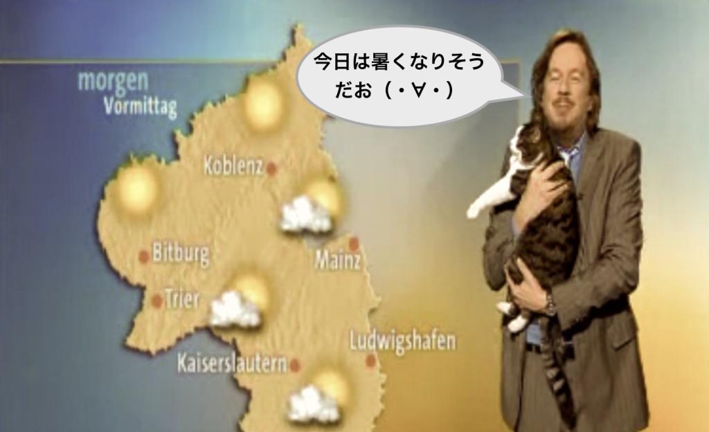 お天気キャスターと猫