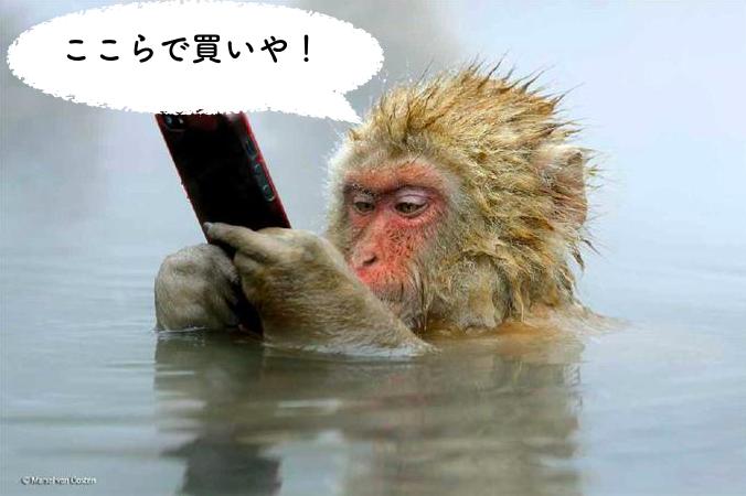 猿がスマホを操作中