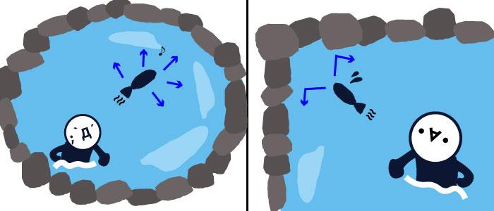 池とエントリーポイントの考え方