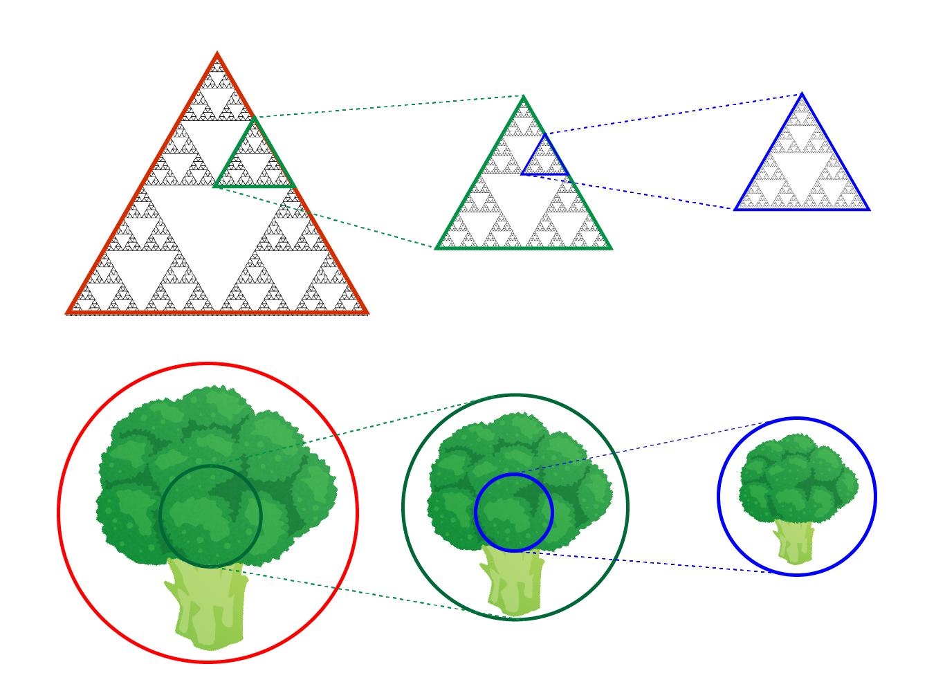 フラクタル構造の例